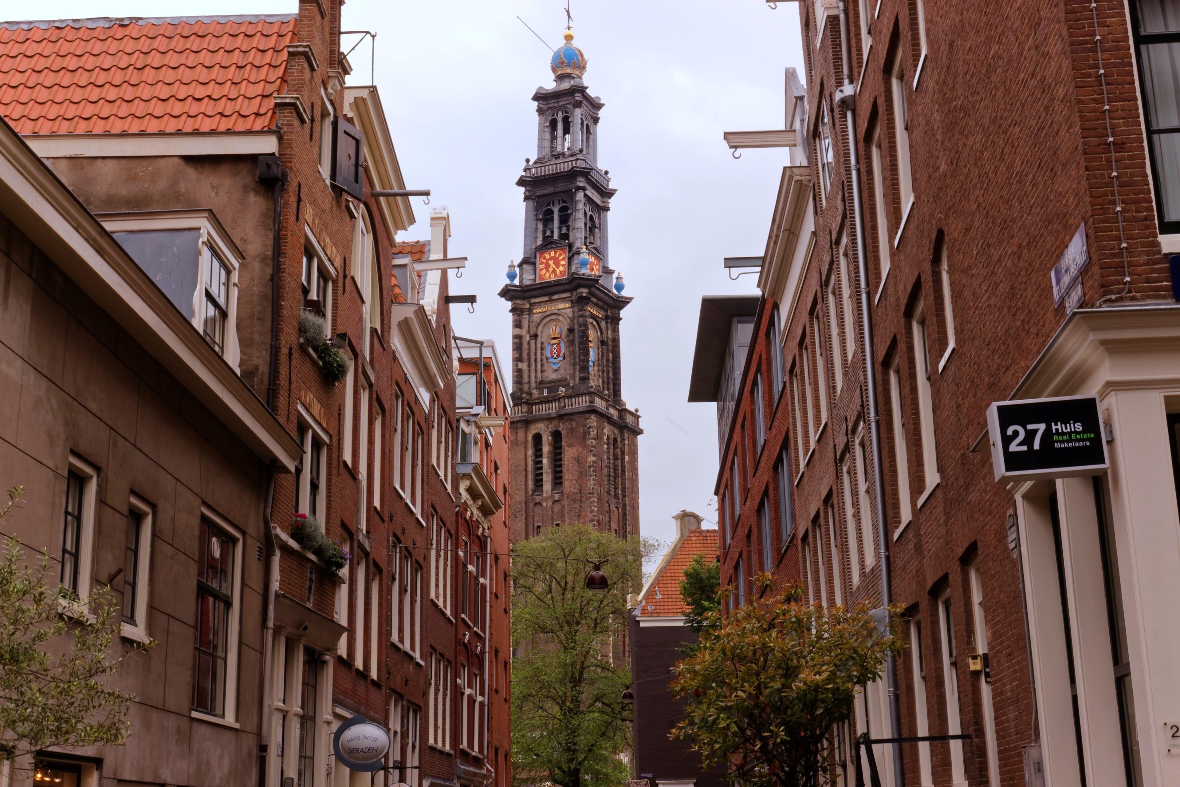 Centrum Amsterdam: The Golden Tulip Hunt image